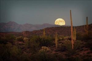 Homes for sale Scottsdale arizona,homes for sale rio verde foothills arizona,homes for sale carefree arizona
