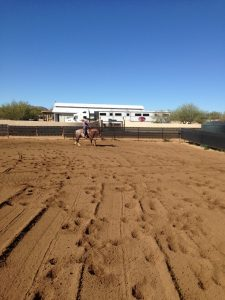 working cowhorse arena north scottsdale,working cowhorse arena rio verde,working cowhorse arena rio verde foothills